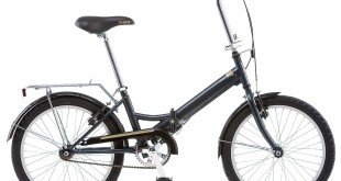 Schwinn Hinge Review